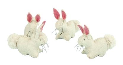 Image de Petit lapin blanc