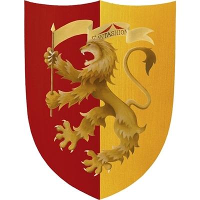 Image de Grand écu de chevalier rouge et jaune